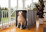 Hundebox M2TK L91cm Aluminium Top Qualität Hundekäfig, hundetransportbox Auto Alu und transportbox. Europäischer Qualitätsproduktion.