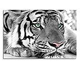 Sinus Art Leinwandbild 120x80cm Künstlerische Fotografie