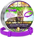 Toldi Flea-Treatment-Cat, Flea-Collar-for-Cats Adjustable Small-Medium-Large, 8 Months Tick & Lice Repellent for Kitten, Waterproof Pet Spot On Flea Treatment Protection Allergy Free (CAT PURPLE) by Toldi