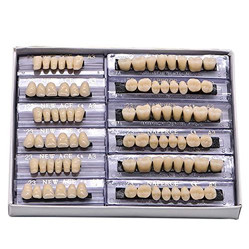 Dental Synthetic Resin Tooth Denture 6 Sets False Teeth 23 A3 Upper Lower Shade Dental for Halloween Horror Teeth(168pcs)