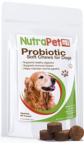 NutraPet Probiotics for Dogs Soft Chews - Prebiotics - Diarrhea, Dog Allergies, Gas, Dog Breath, Constipation - Delicious Chicken Liver Dog Probiotic That Your Pup Will Love! - 60 Count