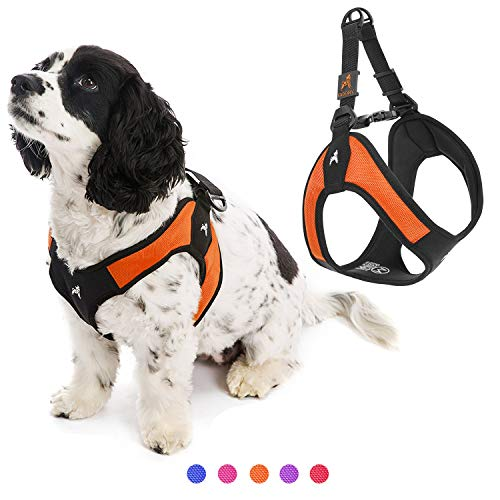 Gooby Dog Harness - Orange, Large - Escape Free Easy Fit Patented Step-in Small Dog Harness - Perfect on The Go - No Pull Harness for Small Dogs or Cat Harness for Indoor and Outdoor Use