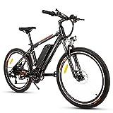 Elektrofahrrad Ebike Mountainbike Herren, 26' 250W Elektrisches Fahrrad mit Herausnehmbarer 36V...