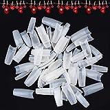 Uñas Postizas, WADEO 500 Piezas Puntas de Uñas Postizas Natural Acrílico Nails Tips para Mujeres, 10 Tamaños, Color Natural Translúcido