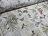 RIVERO Tejidos. Tejido de loneta con Estampado de Hojas, libélulas y Letras en...
