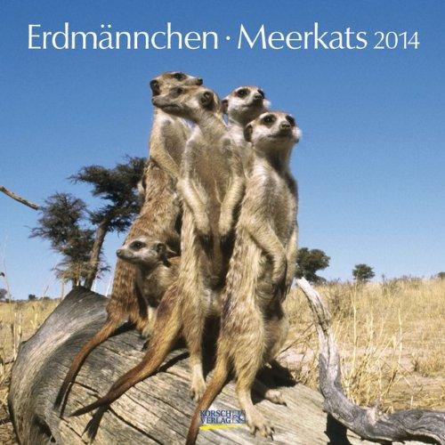 Erdmännchen 2014 Broschürenkalender