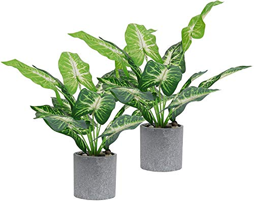 SHACOS 2er Set Kunstpflanze Groß Künstliche Pflanzen im Topf Kunstpflanzen Bonsai Grün Zimmerpflanze für Hochzeit/Büro/Zuhause Dekoration