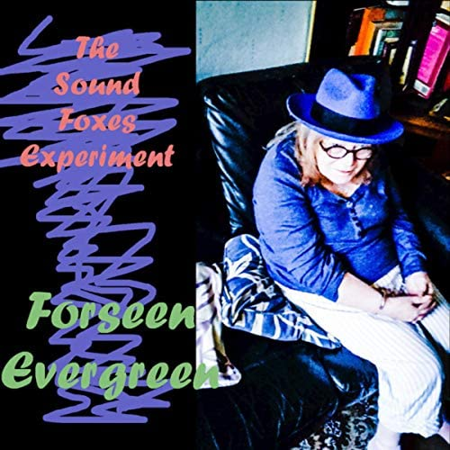 The Sound Foxes Experiment