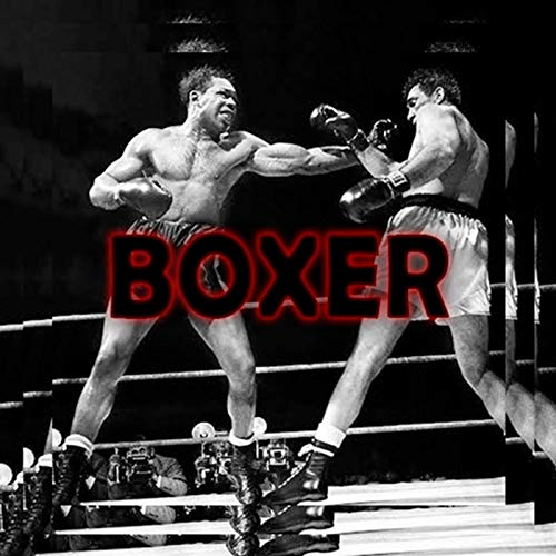 Boxer (feat. Misqued) [Explicit]