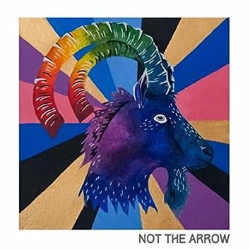 Not the Arrow