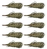 Dufte Momente 10 Stück Sauna Eukalyptus Quast Reisig luftgetrocknet ca. 200g Eukalyptusquast – Set ca. 40-50cm