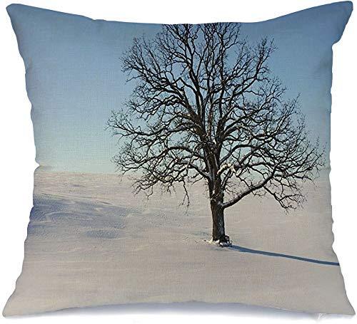 Funda de cojín Hermoso gran árbol de roble en la naturaleza fría y fuerte solo parques claros, solitarios, pacíficos, tranquilos, nieve Funda de Cojine 45 X 45CM