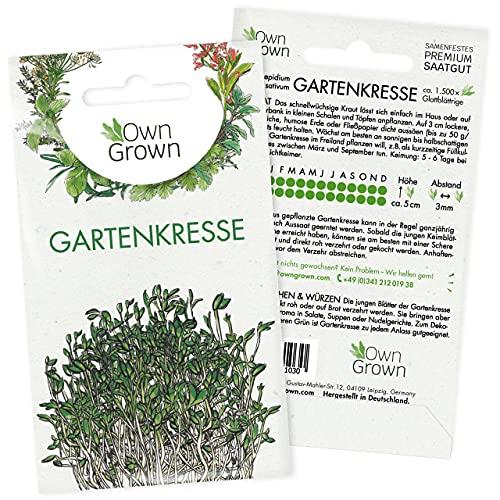 OwnGrown Premium Gartenkresse Samen (Lepidium sativum), Gartenkressesamen mehrjährig, Saatgut für rund 1500 glattblättrige Gartenkresse Pflanzen