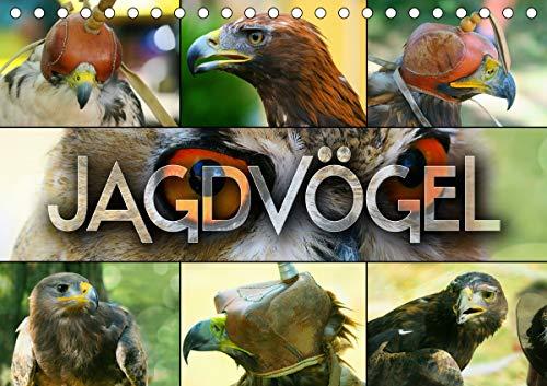 Jagdvögel (Tischkalender 2021 DIN A5 quer)