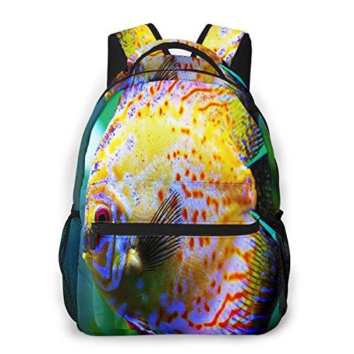 Laptop Rucksack Schulrucksack Diskusfisch Aquarium, 14 Zoll Reise Daypack Wasserdicht für Arbeit Business Schule Männer Frauen