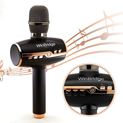 WinBridge Wireless Karaoke Microphone 3 in 1 with Integrated 2 Speakers/Stereo Portable Blutooth Recording Player for Home KTV, Outdoor Party WB009