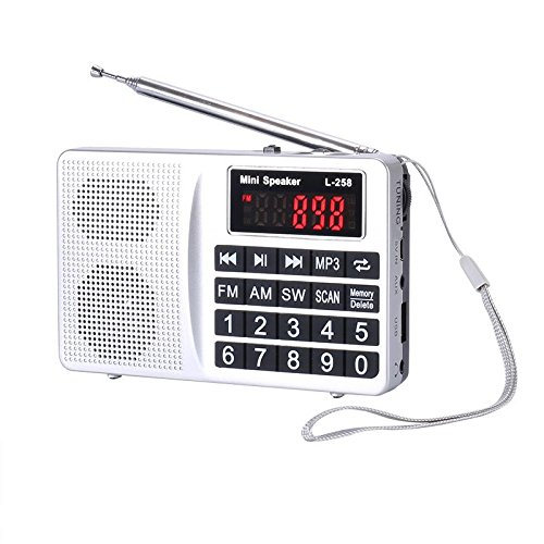 LCJ Portable FM AM Shortwave Multiband Radio Receiver with Micro TF Card and USB Driver MP3 Player USB Charging Cable 1000MAH Rechargeable Li-ion Battery (L-258-Sliver)