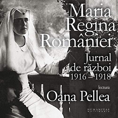 Jurnal de război 1916 - 1918 cover art