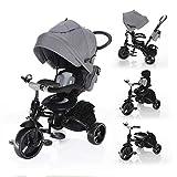 Zopa Citi Trike - Triciclo infantil, color gris