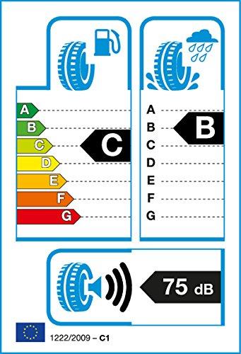 ROADSTONE ROADIAN-HP – 275/40 R20 106 V – C/B/75 – Pneu d'été