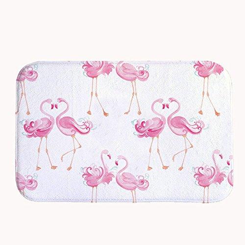 rioengnakg Pink Flamingo Liebhaber Badteppich Coral Fleece Bereich Teppich Fußmatte Eingang Teppich Fußmatten für Vorderseite Außen Türen Eintrag Teppich, Korallenvlies, 16