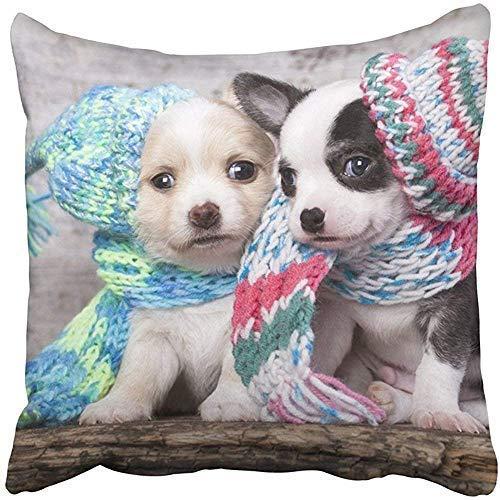 Bru565und Lovely personalizado Funny Throw fundas de almohadas 18 pulgadas Rosa Cachorro Frío llevar Knit Hat perro mascota invierno bufanda desgaste adorable Little cojín fundas de almohada cuadrado día del padre
