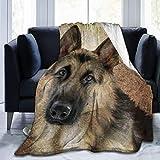 shenguang Franela Fleece Throw Blanket, Art Dog Pastor alemán Simulación Pintura Antigua Mano Vida Silvestre Aceite Alsaciano Antiguo Artístico Raza Cálido y Acogedor Tiro Todas la