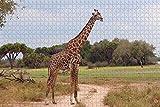 Rompecabezas para adultos USA America Palm Desert Jirafa Zoo y Jardines Rompecabezas de madera de viaje, 1000 piezas 75 × 50 cm