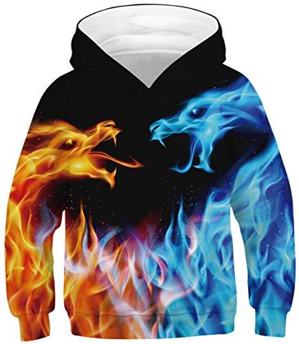 Ocean Plus Jungen Lange Ärmel Sweatshirt Tiere Digitaldruck Pullover mit Kapuzen Freizeit Sport Kinder Galaxie Kapuzenpullover (S (Körpergröße: 125-130cm), Eisfeuer Doppel Drachen)