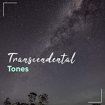 """ Transcendental Reiki Tones """