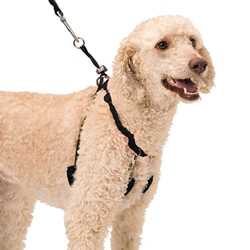 YUP! Pet Halter, Large, Black