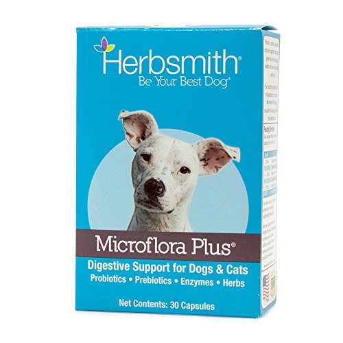Herbsmith Microflora Plus – Dog Digestion Aid –Probiotics and Digestive Enzymes for Dogs – Prebiotic for Dogs – 30ct Capsules