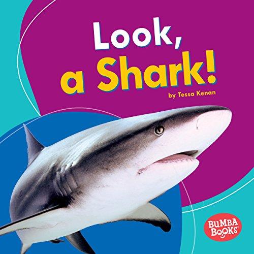 Look, a Shark! copertina