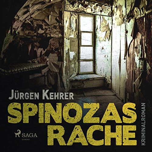 Spinozas Rache cover art