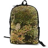 Mochilas universitarias mochila escolar portátil mochila de viaje, senderismo, camping, búho pájaro depredador árbol de montaña cenizas