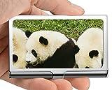 Estuche para tarjeta con nombre comercial, juego Caja de tarjeta de visita con soporte para tarjeta de visita panda animal (acero inoxidable)