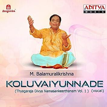 Koluvaiyunnade (Thyagaraja Divya Namasankeerthanam, Vol. 1)