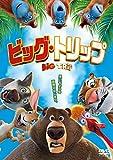 ビッグ・トリップ[DVD]