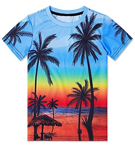 RAISEVERN Divertido Unisex Niños Impresiones en 3D Camisetas Casual Tops Camisetas Manga Corta Fresca para los Muchachos Adolescentes 6-16T