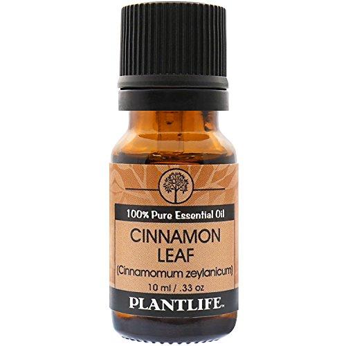 Plantlife Cinnamon Leaf 100% Pure Essential Oil - 10 ml