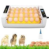 Incubadora Automática de 24 Huevos con Iluminación LED, Control de Temperatura y Volteador Automático de Huevos,...