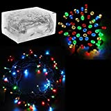 30 Mini Bulb LED Battery Operated Fairy String Lights in Assorted Colors for Valentines Day, Romantic Wedding, Home Decoration Room Lighting, Christmas, Crafts (158' inch Long String)