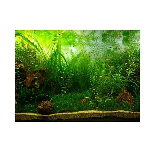 Wasser Gras Stil Aquarium Aquarium Hintergrund Poster PVC Klebe Dekor Papier