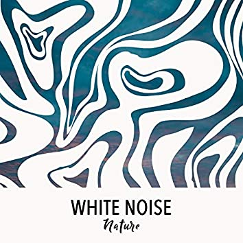 # 1 Album: White Noise Nature
