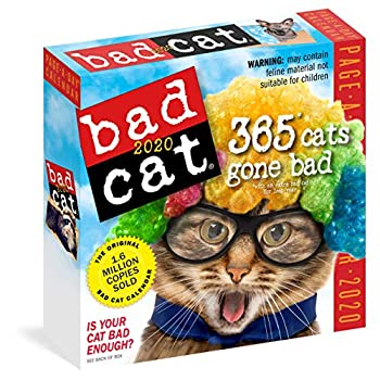 Bad Cat Page-A-Day Calendar 2020