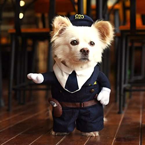 Hoopet, costume alla moda per cuccioli, perfetto come travestimento di Halloween o Natale per cani e gatti