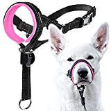 GoodBoy Dog Head Halter with Safety Strap - Stops Heavy...