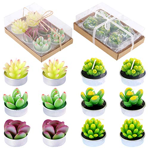 Glarks 12Pcs a Pack Succulent Cactus Candles for Birthday Party Valentine's Day Wedding Spa Home Decor and DIY Gift
