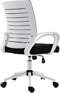 Retrofish Office Desk Chair High-Back Gaming Chair PC Office Chair Computer Racing Chair Ergonomic Executive Swivel Rolling Chair Network Chair Mesh Chair for Adults Women Men,US Shipping (A)