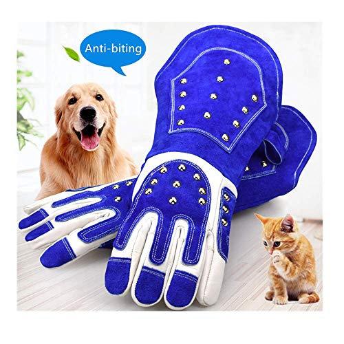 EULANGDE Thickened Animal Handling Gloves Bite Proof Kevlar Reinforced Leather Gloves for Training Dogs, Cats, Squirrel Snake,Birds and Reptiles,Oven,BBQ,Grill,Fireplace,Furnace,Stove,Pot Holder,Welding,Tig Welder,Mig(18 INCH, Blue/White)